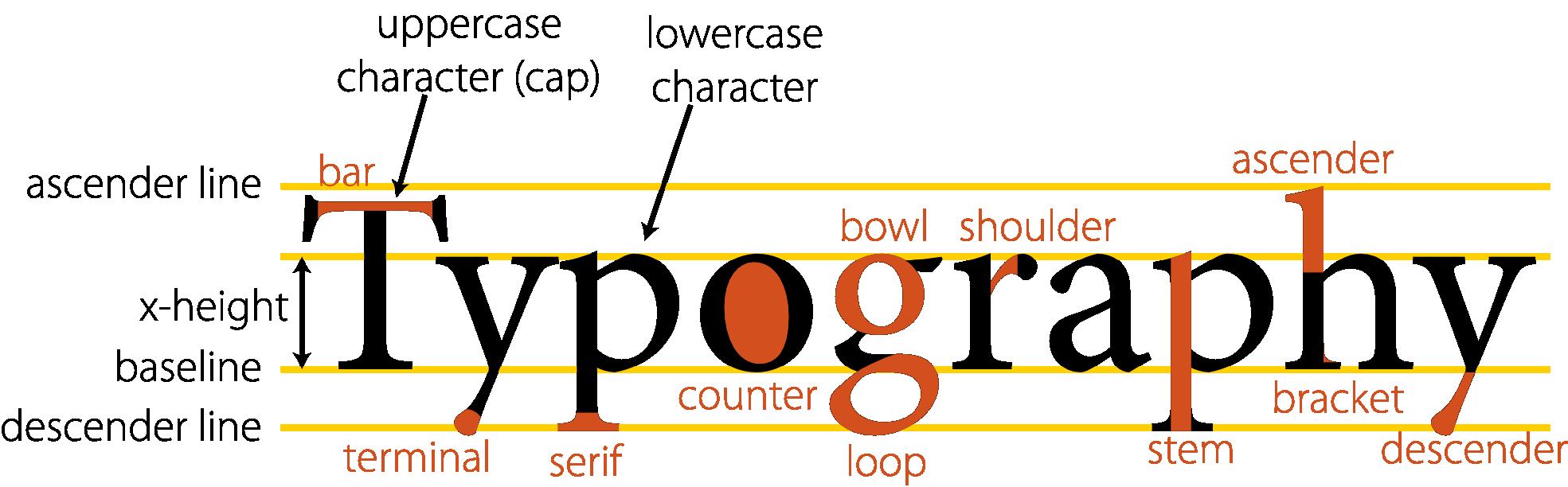 anatomy_of_type_typography-1969px