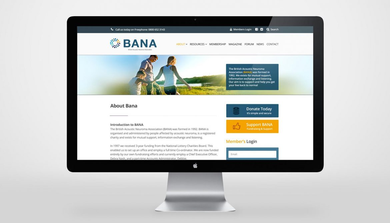 Bana-2-copy